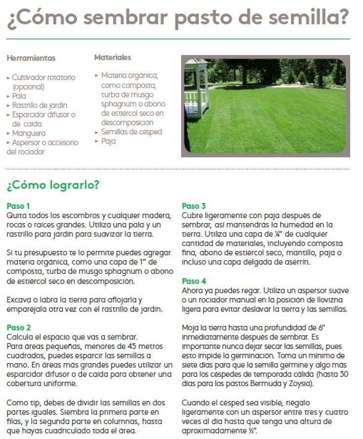 M s de 25 ideas incre bles sobre sembrar pasto en - Como plantar cesped en el jardin ...