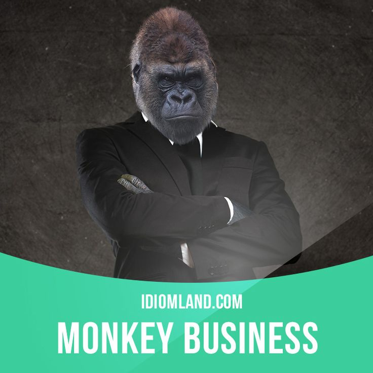 """Monkey business"" means ""silly or dishonest behaviour"". Example: Our teacher warned us not to try any monkey business while she was out of the room."