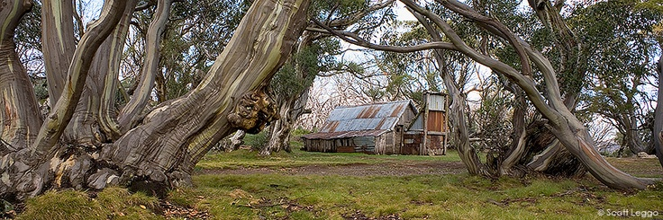Wallace's Hut Mt Bogong High country refuge | Limited Edition Prints | Scott Leggo images | Australian landscape photographer | Limited edition photography