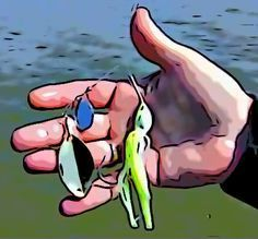 Shallow Water Spinnerbait Tactics