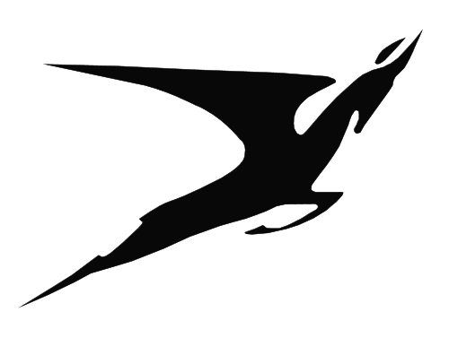Flying Springbok Emblem 1971