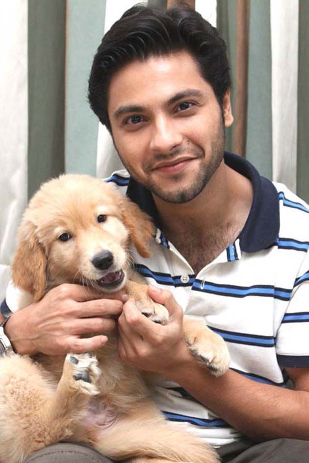 Mishal Raheja: Reality shows have never intrigued me : Tv Talks