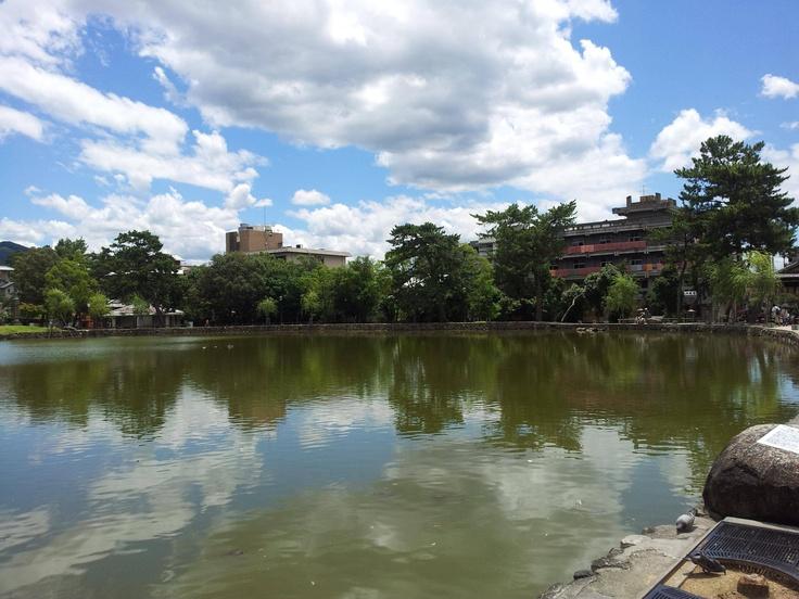 나라공원과 흥복사 사이에 있는 거북이(자라?) 호수.
