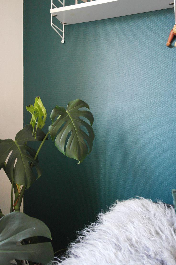 sadolin ocean green - grøn væg, stue