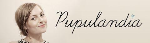 Valokuvien tekijänoikeudet blogeissa FOR DUMMIES - Pupulandia