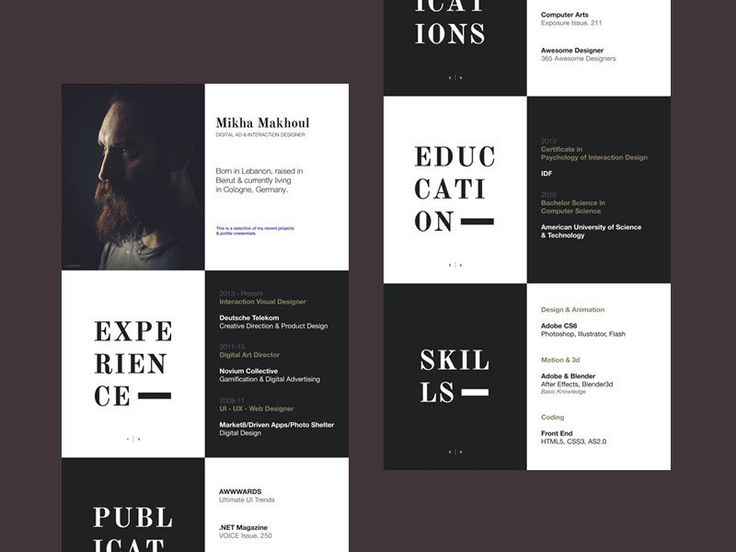 10 best Working skills images on Pinterest Cv design, Resume - web designer resume template