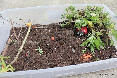 Bug Hunt Sensory Tub: Springtim Gardens, Dirt Bugs Sensory, Bugs Gardens, Toddlers Activities, Tubs, Dollar Stores, Minis Bugs, Bugs Hunt'S, Springtim Sensory