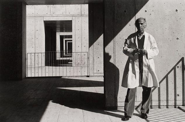 Jonas Salk, Arnold Newman