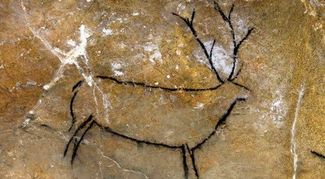 Ciervo en la Cueva de Las Chimeneas, Puente Viesgo  #Cantabria #Spain