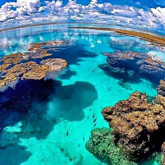 Praia do Patacho, Litoral Norte de Alagoas!