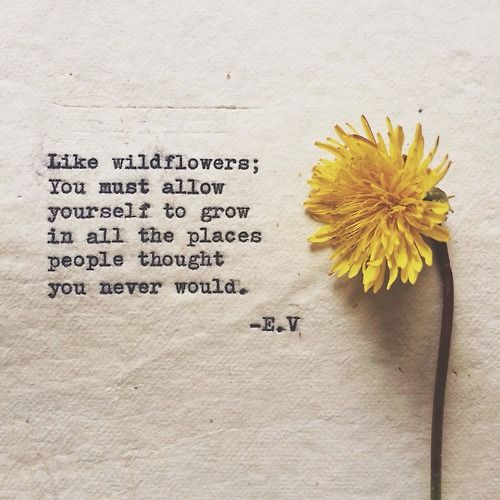 """""""Like wild flowers; you must allow yourself to grow in all the places people thought you never would."""" -- E.V."""