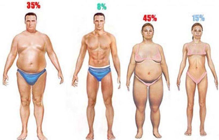 Миллионы людей заботятся о своем весе, особенно это касается женщин, которые мечтают быстро и без особых усилий похудеть. Но иногда это бывает очень трудно. Тем не менее, есть ингредиенты, которые природа дала нам, чтобы ускорить потерю веса и помочь сжигать больше калорий, без особых усилий. Вы еще не пробовали мед и корицу для потери веса? …