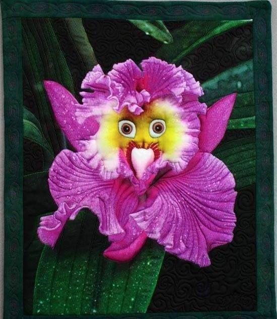 Orquídea feliz!!                                                                                                                                                                                 Más