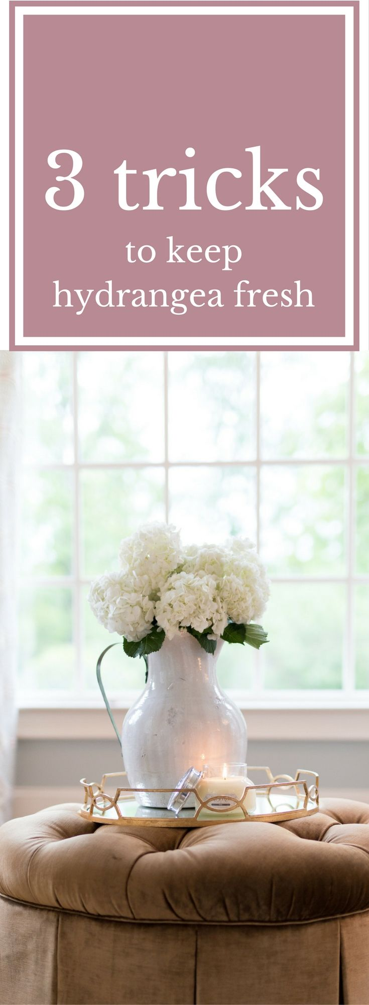 These three tricks will keep your hydrangea fresh and lasting longer! If you love cut hydrangea, use these easy steps to both revive wilting hydrangea and keep your flower arrangements lasting longer. You'll be shocked at how easy they are and how well they work to make beautiful flower arrangements look great longer and bring wilted hydrangea back to life!