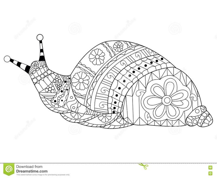 Snail Coloring Vector For Adults Stock Vector - Image ...