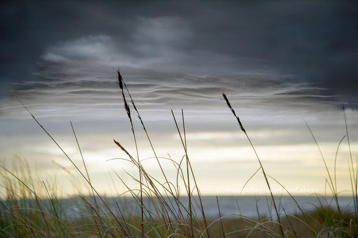 https://flic.kr/p/BX6HCW | Mientras cae la tarde - Maullin (Patagonia - Chile) | Maullin se ubica a 57 kilómetros al este de Puerto Montt, en la Provincia de Llanquihue, Region de los Lagos. Este pequeño poblado situado a orillas del Río homónimo, posee atractivos naturales como la playa Pangal, Puerto Godoy, Quillagua y los Humedales del Rio Maullin.  Pangal es la playa principal y queda al suroeste de Maullin entre las desembocaduras de los ríos San Pedro Amortajado y Río Maullin. De…