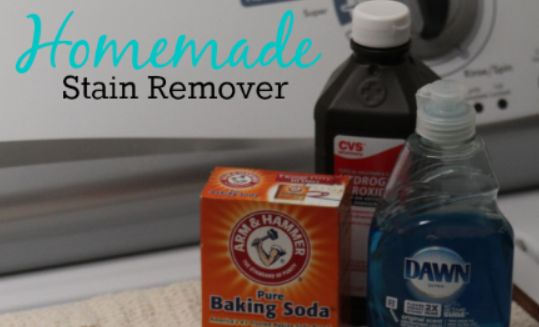 1000 Ideas About Homemade Shout On Pinterest