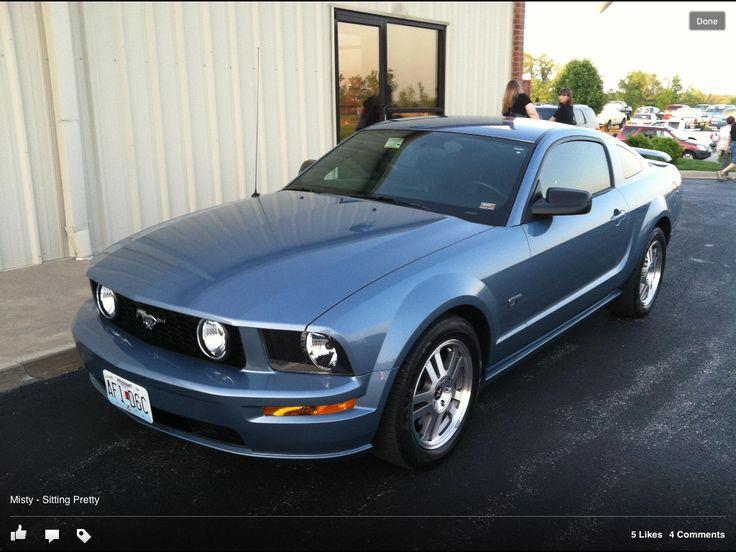 Misty - My Windveil Blue Mustang