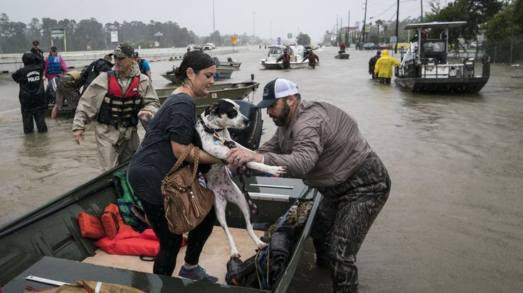 Volunteers in boats rescue people and their pets from their homes in Houston, Texas. Rising water from Hurricane Harvey pushed thousands of people to rooftops or higher ground as they had to flee their homes. Photo by: Jabin Botsford/The Washington Post via Getty Images