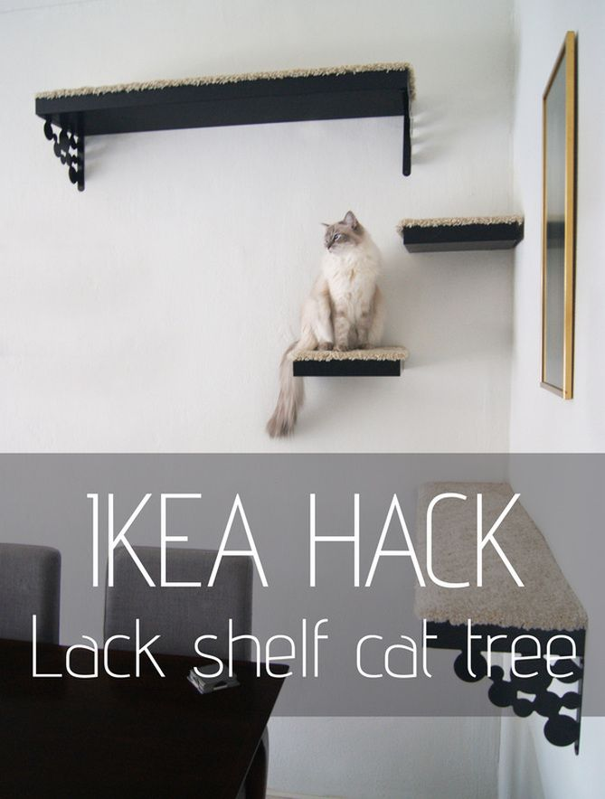 IKEA HACK: DIY cat tree made out of LACK shelves, ADUM rug and EKBY brackets