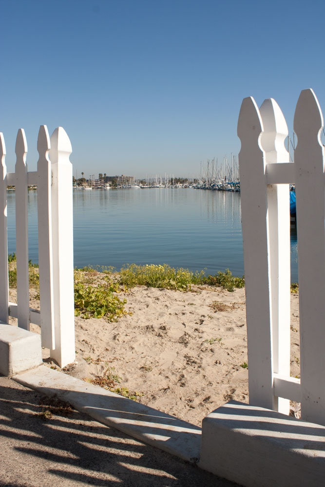17 best images about point loma ocean beach on pinterest for Point loma fish counts