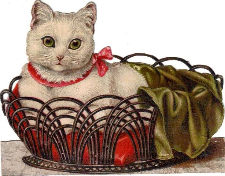 Larger Victorian Die Cut Scrap White Kitten Pink Bow in Basket c1880s