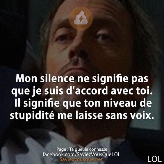 Mon silence ne signifie pas que je suis d'accord avec toi. Il signifie que ton niveau de stupidité me laisse sans voix. | Saviez Vous Que? | Tous les jours, découvrez de nouvelles infos pour briller en société !