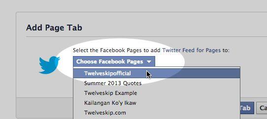 How To Add Twitter App On Your Facebook Fan Page   TWELVESKIP