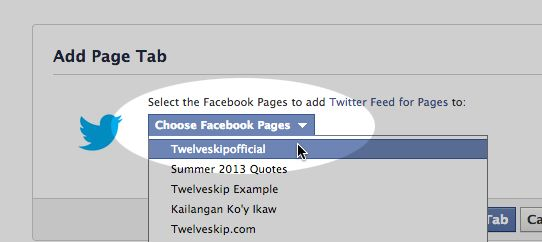 How To Add Twitter App On Your Facebook Fan Page | TWELVESKIP