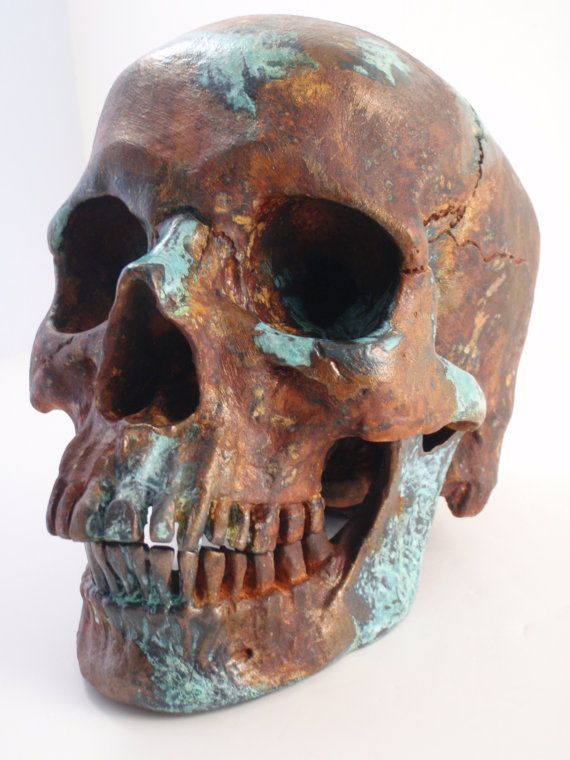 Human Skull Taxidermy Rust with Bronze Natural Turquoise ...
