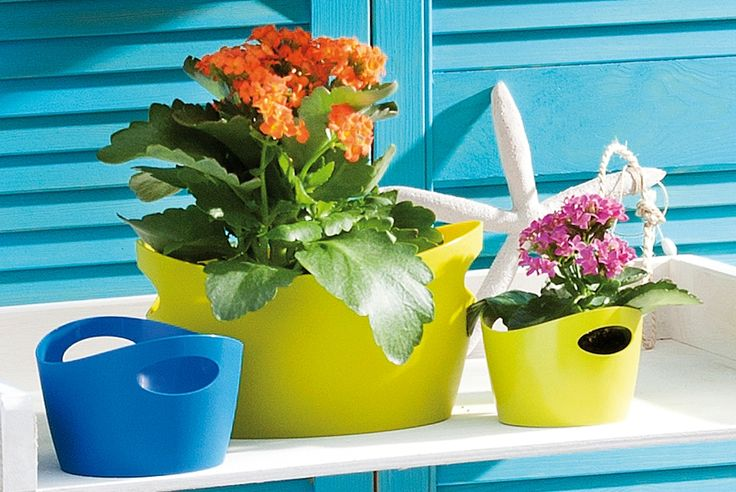 Bottichelli was made for summer! a great storage bin for outdoors and in.