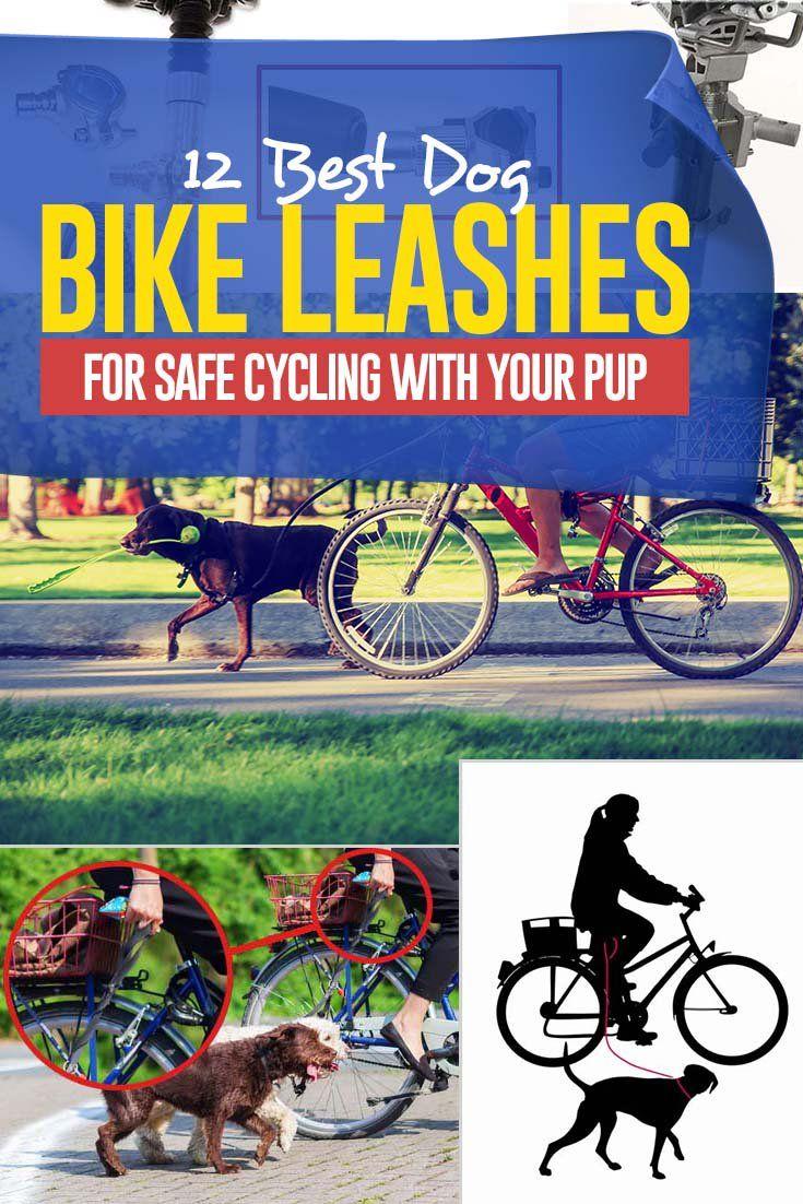 12 Best Dog Bike Leashes Hands Free Dog Bike Leash Biking With Dog Best Dogs