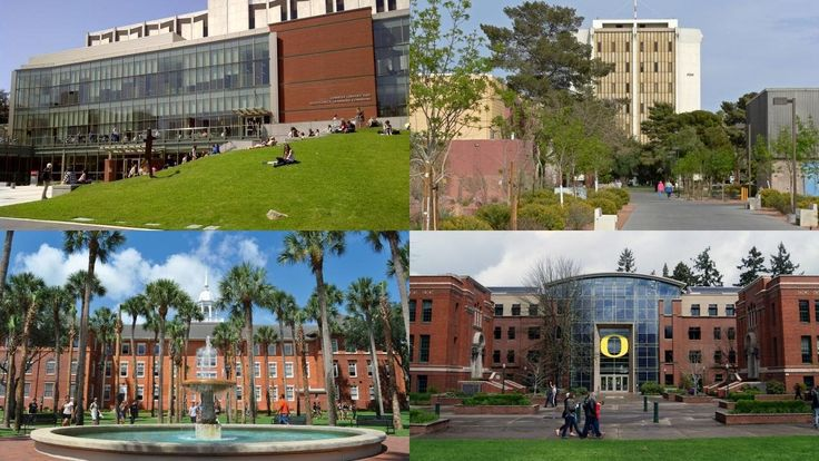 20 BEST SCHOOLS FOR STUDYING LEGAL WRITING