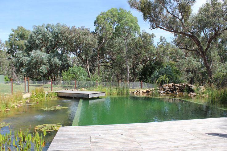60 Best Natural Pools Images On Pinterest Natural Pools Natural Swimming Pools And Swim