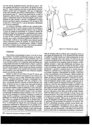 Ortopedia e traumatologia sizinio hebert 2a edicao