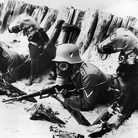 I didn't know there were gas masks for dogs. War really sucks.    From the First World War we have Stubby, the highest decorated dog in the history of the United States.