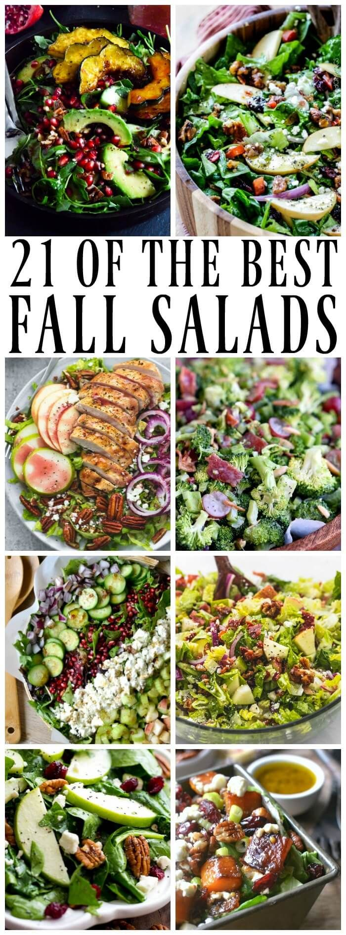 Best Salad Recipes for Fall - easy ideas including kale, green salad, fruit, apples and more