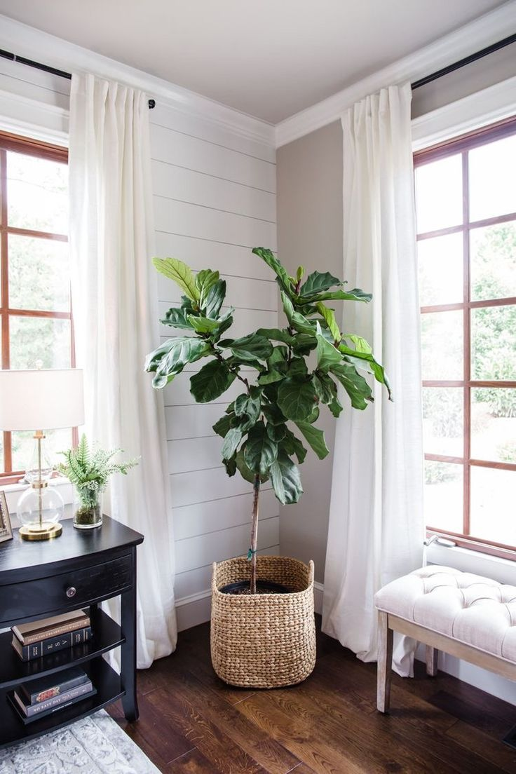Living Room Wood White Shiplap White Curtains In 2019