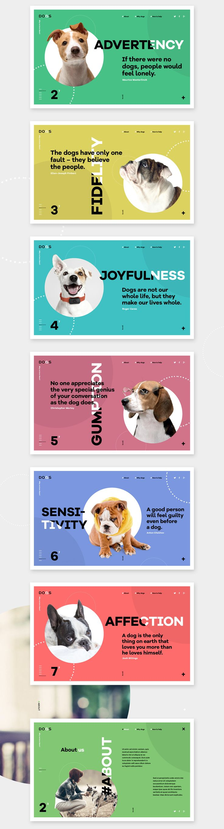 This project is about dogs, about the love to the animals. It's a reminder to all of us about the love that we should give to our four-legged friends.All rights of images are owned by their owners and used only for presentation. Project is non-commercial…