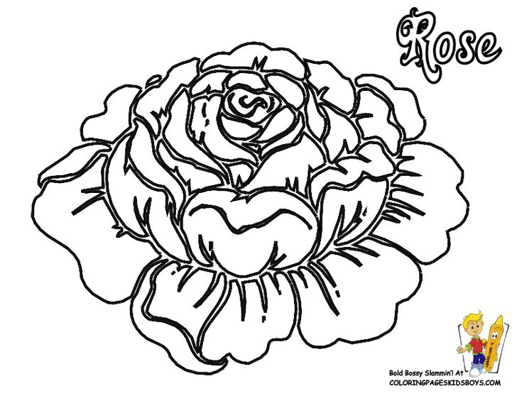 flowers coloring pages roses free rose flower rose coloring - Coloring Pages Roses