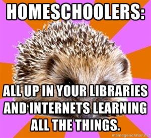 Homeschooler Hedgehog knows. They are always there, learning all the things...