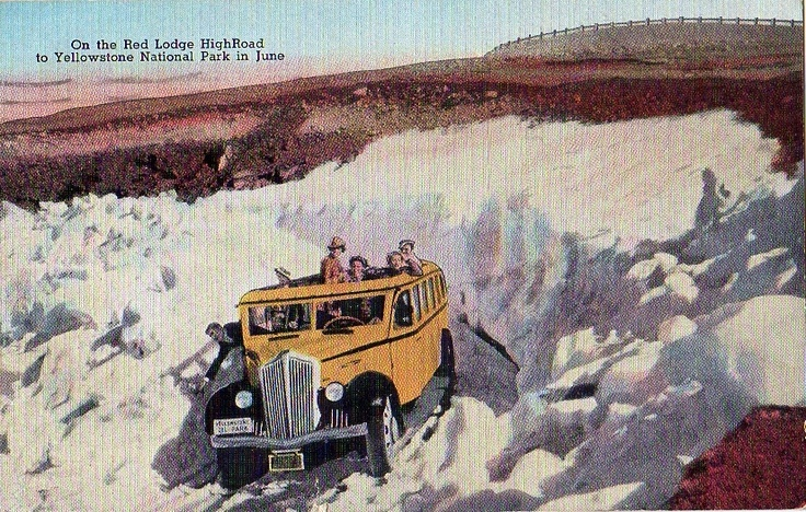 1937 White Bus Yellowstone Park Park Buses Pinterest