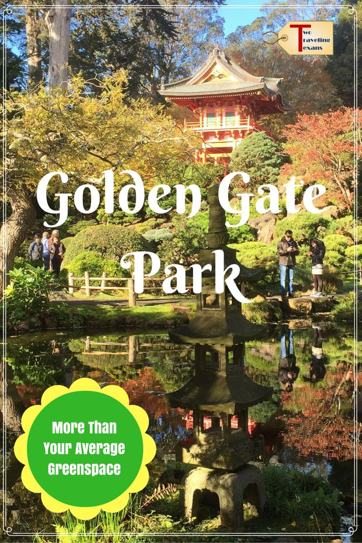 A travel blog about all the things to do in Golden Gate Park and why you need to add it to your to do list for San Francisco.