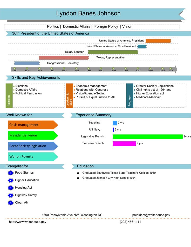10 best images about visual resume on timeline