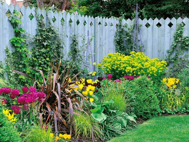 blue stained stockade style fence surrounds garden backyard landscapinglandscaping ideaslandscaping along
