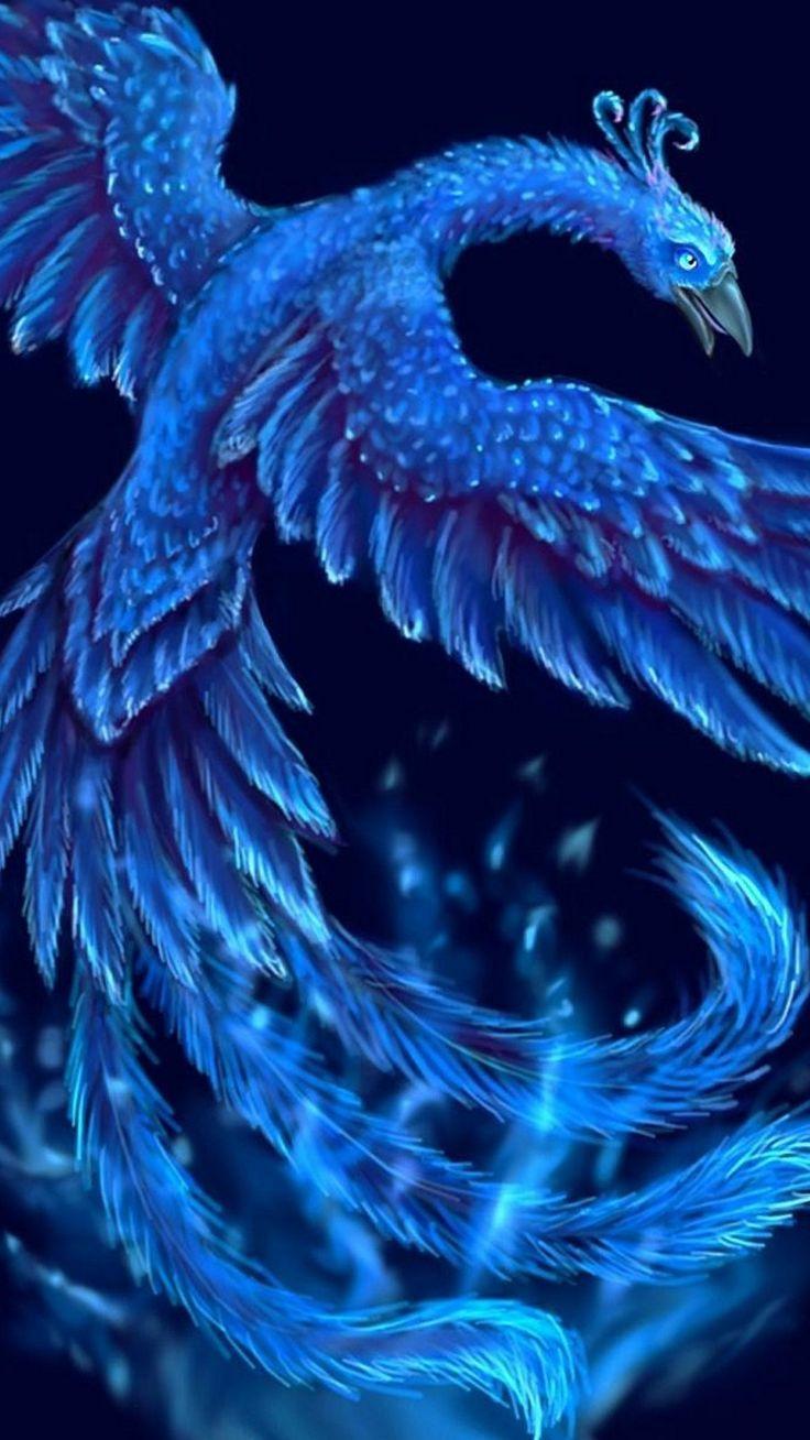 Ice Phoenix Wallpaper iPhone Phoenix wallpaper, Phoenix
