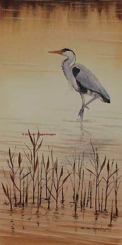 Grey Heron Bird Painting by artist Sue van Coppenhagen- I will paint something like this someday