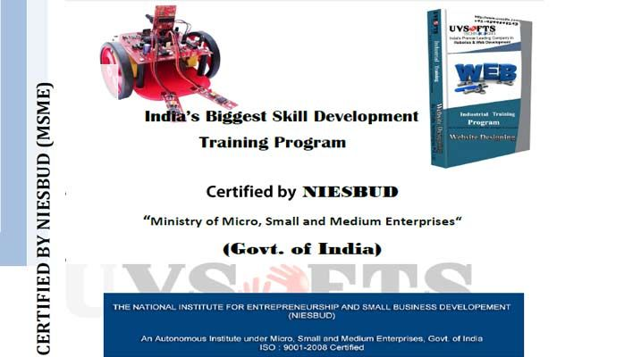 Skill Development Training Program Certified by NIESBUD
