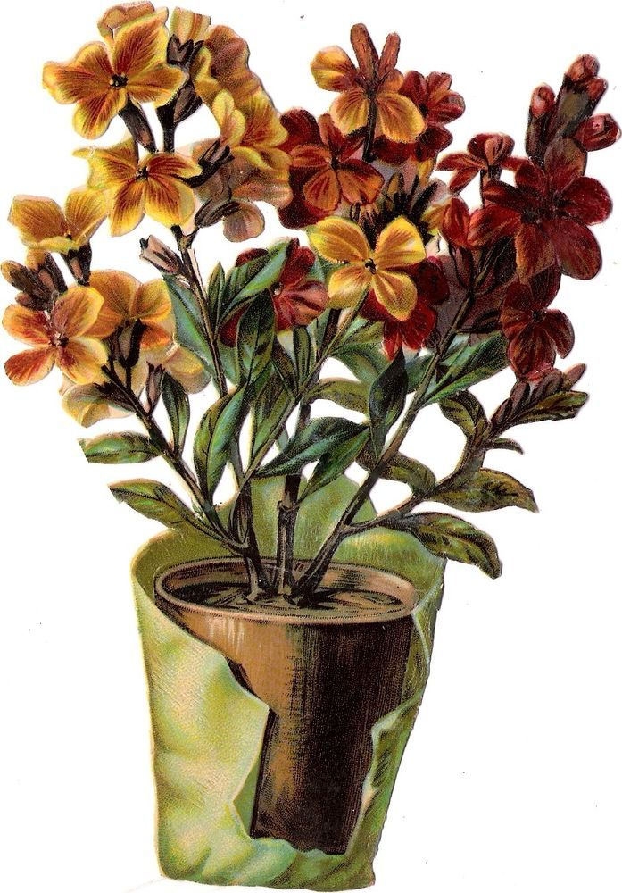 Oblaten Glanzbild scrap die cut  chromo  Blumen stock  17 cm Topf pot flower