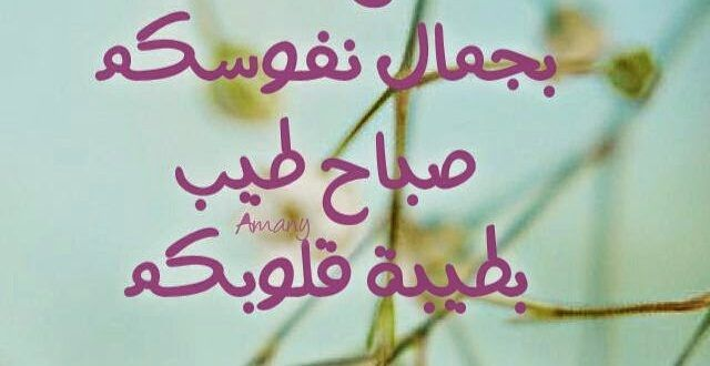 عبارات صباح الخير اجمل كلام على الصباح Love Words Good Morning Words